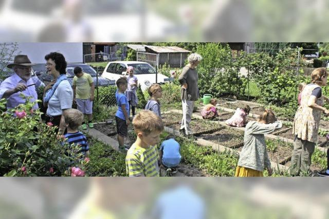 Gärtnern im Unterricht