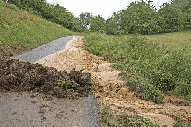 Einsätze nach Starkregen in Müllheim und Schliengen