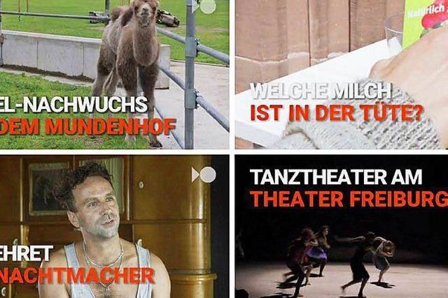 Videos bei Facebook: Freiburg.tv zeigt die Bilder der Stadt