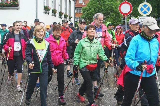 504 Starter beim Nordic-Walking-Gipfel