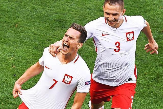 Milik erlöst Polen: Mühsames 1:0 gegen Nordirland