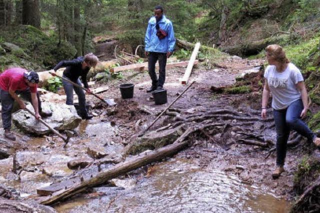 Flüchtlinge helfen im Naturschutzgebiet