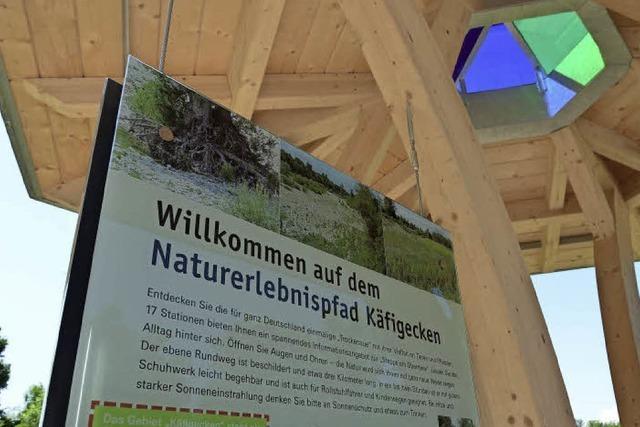 Die Steppe am Oberrhein