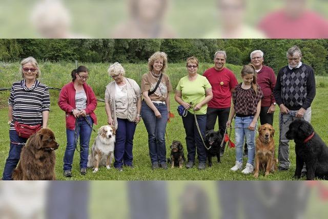 Hundefreunde ziehen nach Wallbach