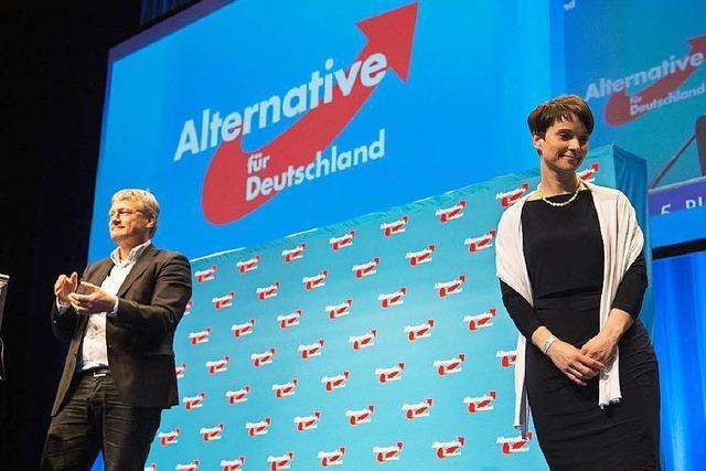 Der AfD-Fraktion in Stuttgart droht die Spaltung