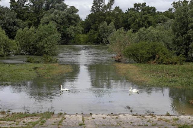 Der Rhein ufert aus