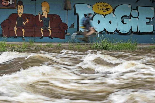 Leserfoto: Dreisam mit Hochwasser