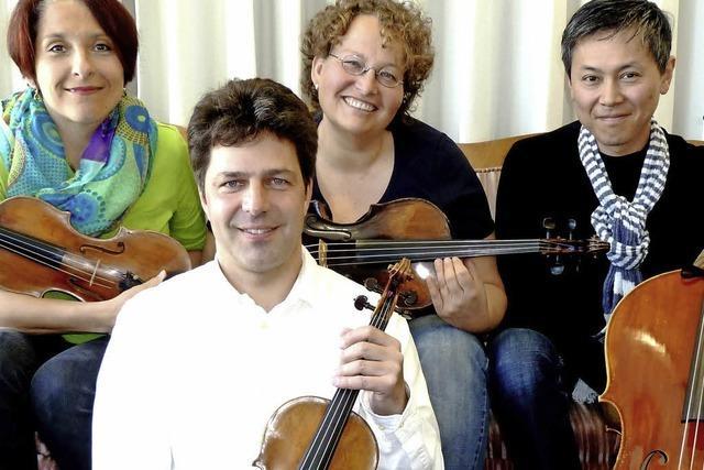 Das Bertold-Quartett spielt im Schloss Ebringen