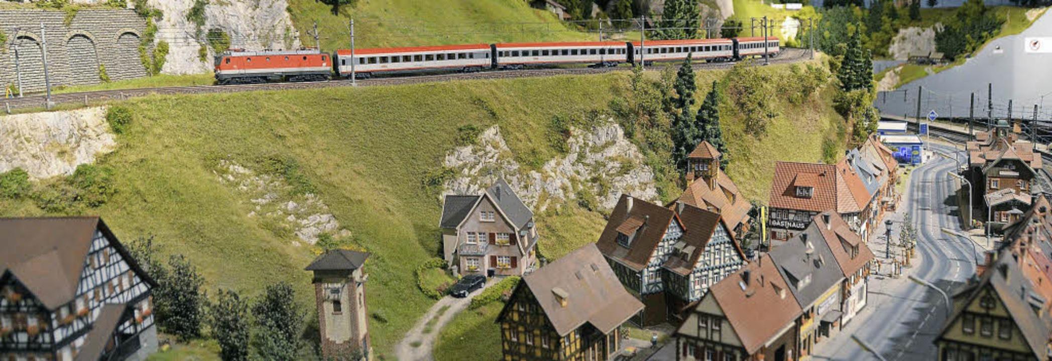 Zug in Landschaft: Das ist nur ein kle...lage im Schluchseer Modellbauzentrum.   | Foto: Bury
