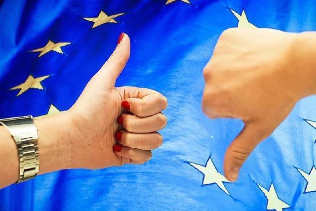 In welchen Ländern sind die EU-Gegner stark?