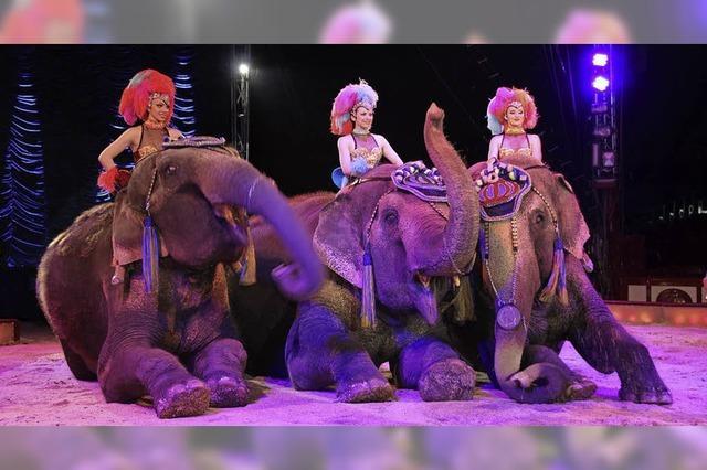 Demo vor dem Zirkus Krone