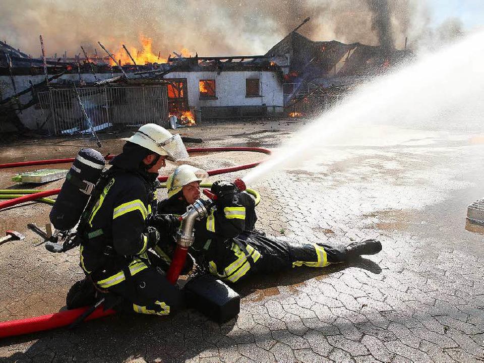 Trotz des Einsatzes von rund 120 Feuer...m für 500 Schweine jede Hilfe zu spät.  | Foto: Christoph Breithaupt