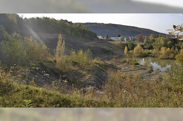 Trinationales Umweltzentrum stellt Tongrube Kandern vor