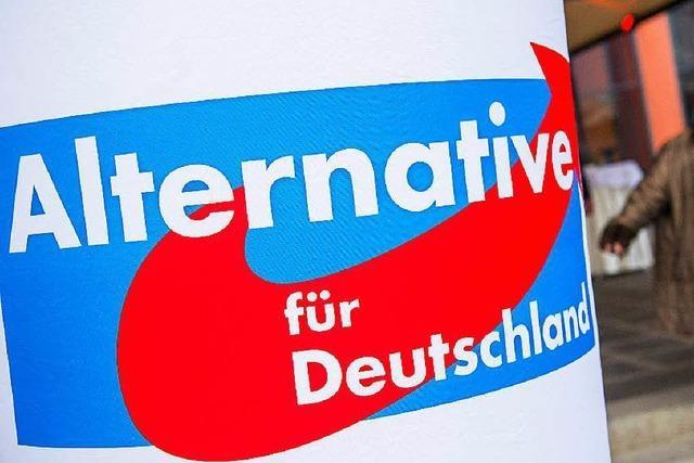 Freiburger AfD-Funktionär Mandic will mit Rechtsextremen zusammenarbeiten