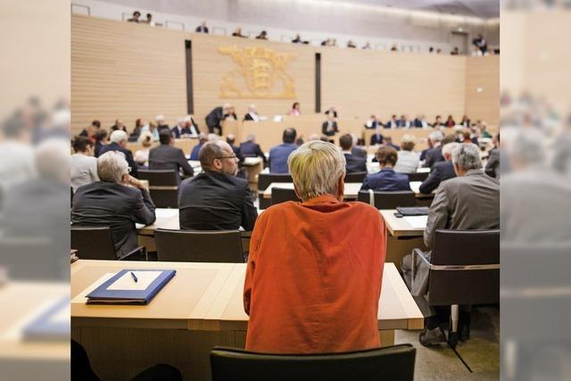 Der Umgangston im baden-württembergischen Landtag wird rauer