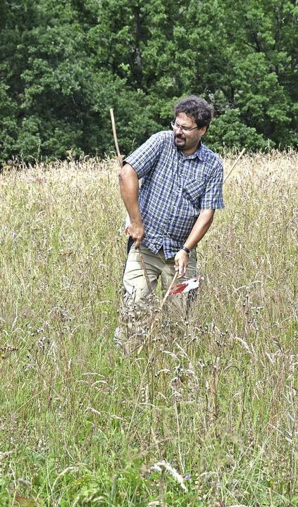 Markus Röhl demonstriert, wie der Artenreichtum einer Wiese erfasst wird.  | Foto: Juliane Kühnemund