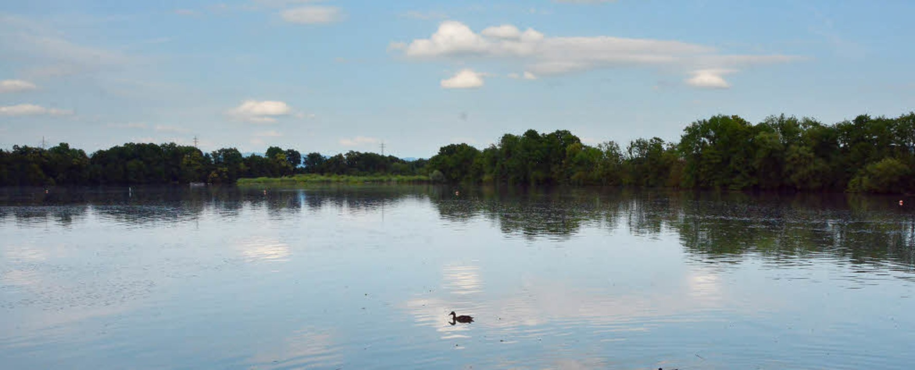 Auch am Altrhein will der BUND einen ihrer Spaziergänge stattfinden lassen.   | Foto: Heinz Vollmar