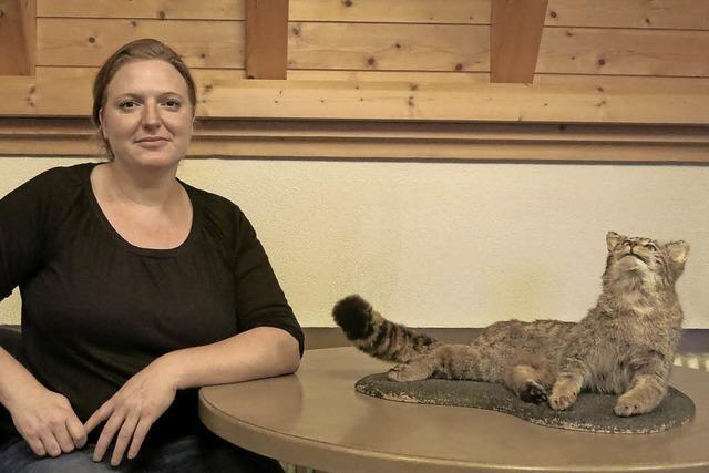 Biologin stellte Ergebnisse eines Forschungsprojekts über Wildkatzen vor