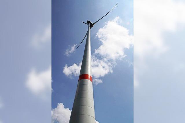 Rotmilan stoppt den Windpark in Rickenbach