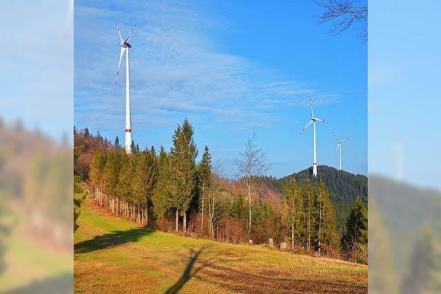Bürger-Energie des Lahrer EWM im Aufwind
