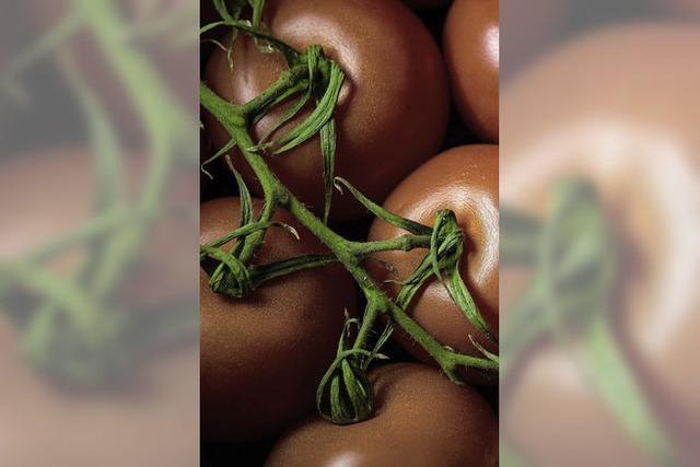 Es gibt keine Tomaten mehr in Gunsbach