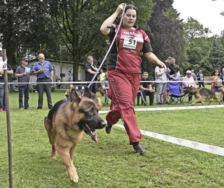 Immer der Markierung entlang: Die Hund...uen zu und nehmen Maß (rechts unten).   | Foto: Thomas Kunz
