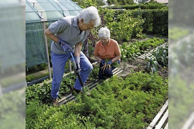 Nutzgarten erfreut mit dem Lohn der Mühen, hält aber auch Arbeit parat