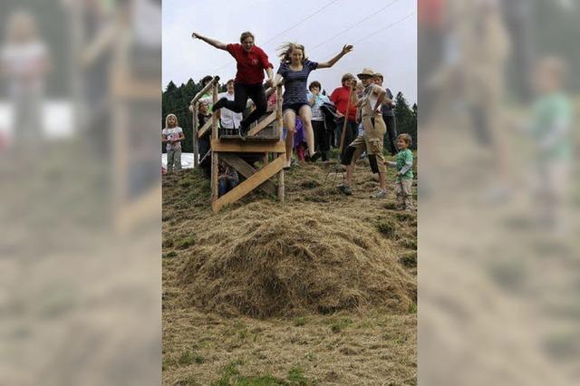 Festjubiläum mit Musik,Heugumperfest und Beachparty in Bernau