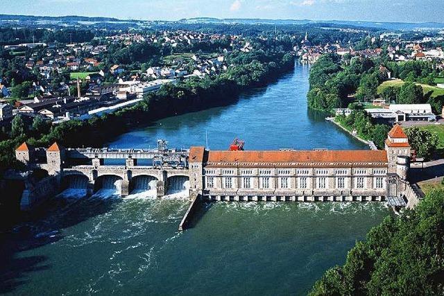 Vermisster Schwimmer tot im Rhein gefunden