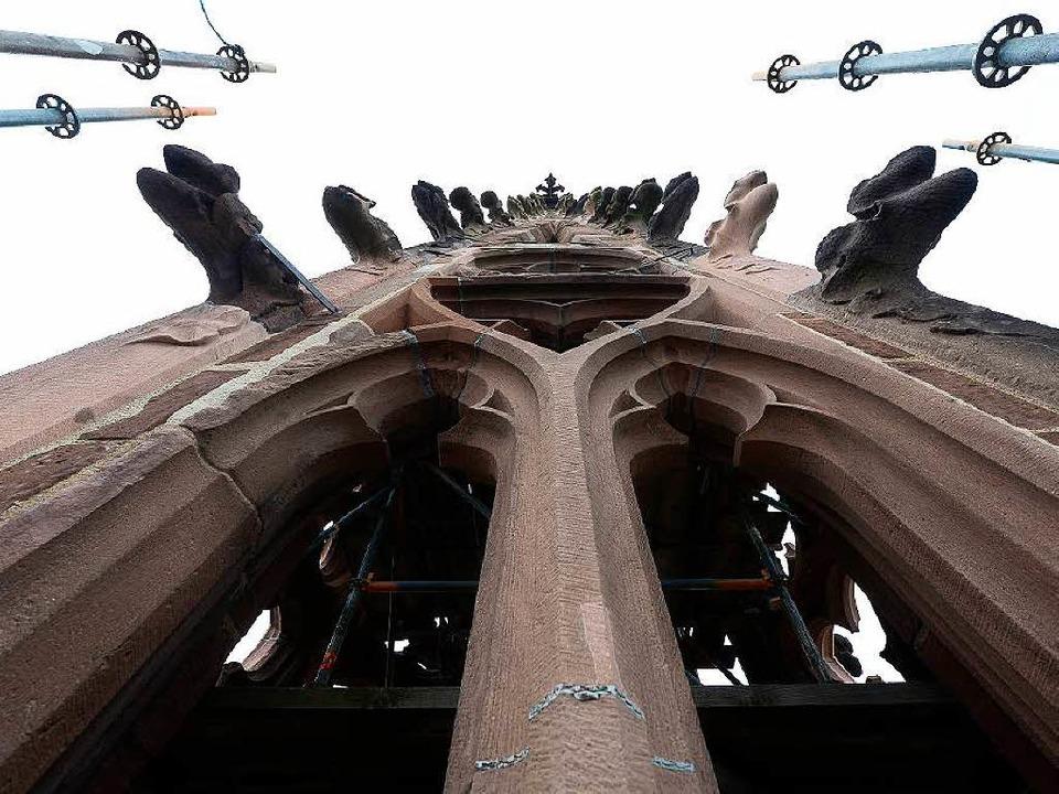 Der Freiburger Münsterturm und die Arb... unserer Liveübertragung auf Facebook.  | Foto: Ingo Schneider
