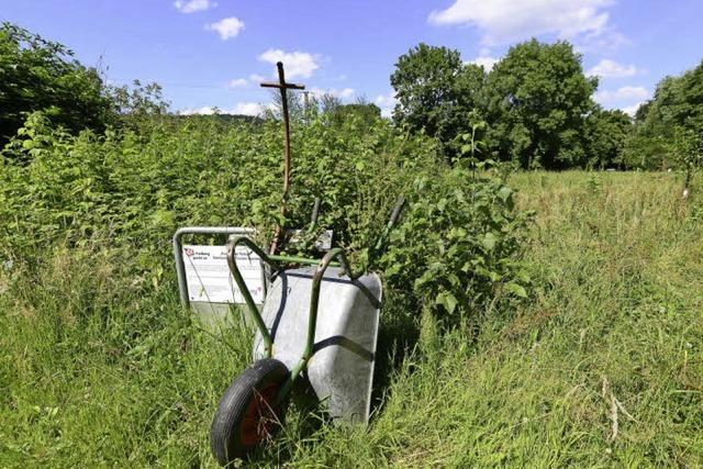 Stadt Freiburg stoppt Urban Gardening im Landschaftsschutzgebiet