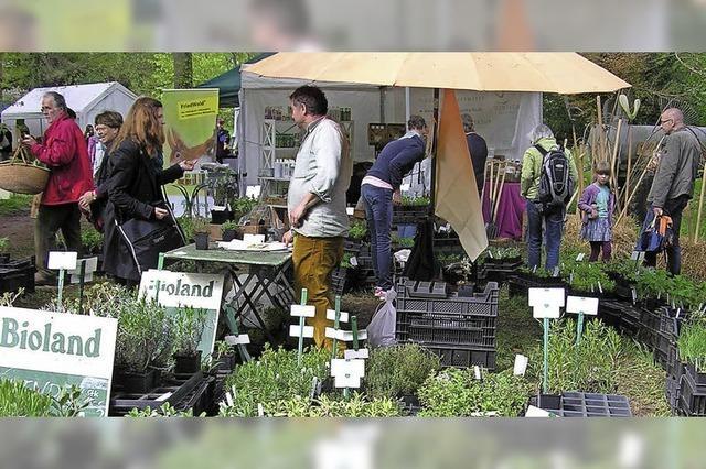 Die Biogartenmesse findet erstmals im Park des Schlosses Ebnet statt