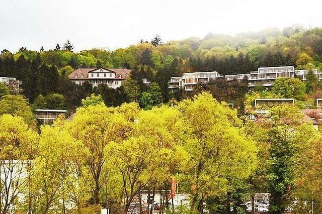 Mehrheit für Bauen am Alten Berg