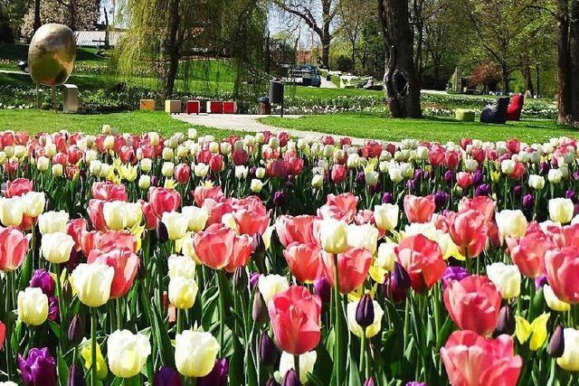 Gartenschau in Öhringen knackt 500.000-Besucher-Marke
