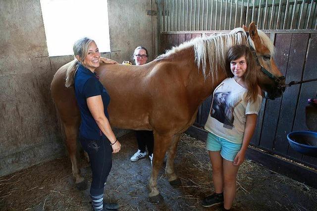 Unterricht auf dem Pferderücken