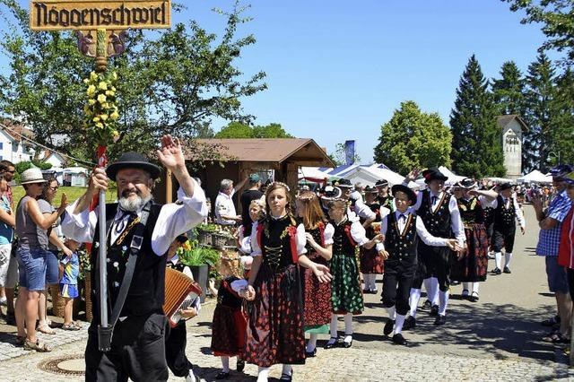 Tausende Besucher bei Nöggenschwieler Rosentagen