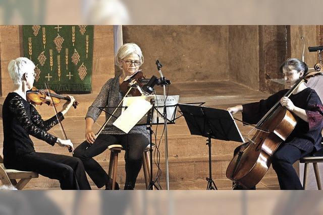 Instrumente erzählen Haydn und Beethoven