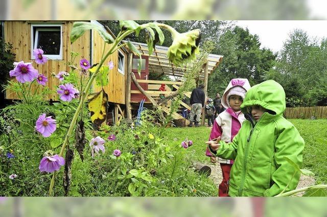 Kindergarten-Zuwachs natürlicher Art