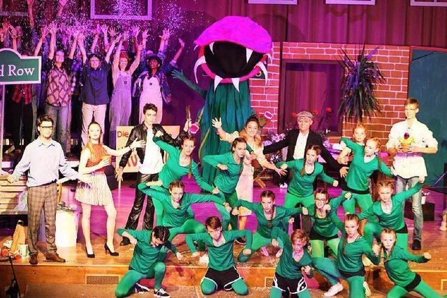 Musical des MCG in Kirchzarten: Mitreißende Show mit Monsterpflanze