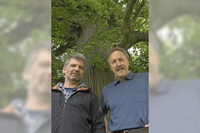 Kompetenz für Bäume