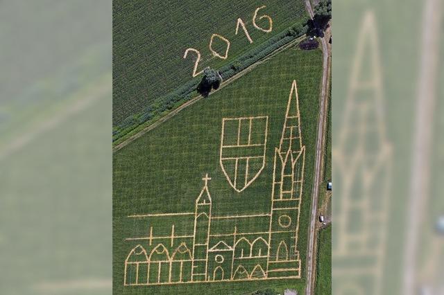 Das Maisfeld-Labyrinth in Opfingen eröffnet am Samstag die Saison