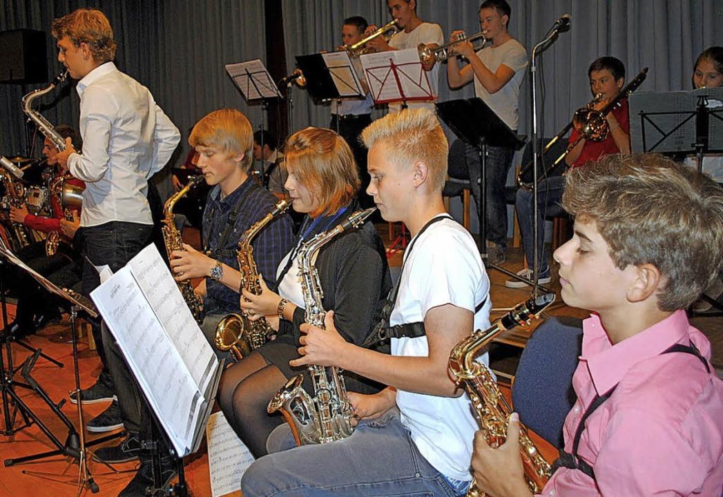 Die Young Lions Big Band der Jugendmusikschule    Foto: F. Zimmermann