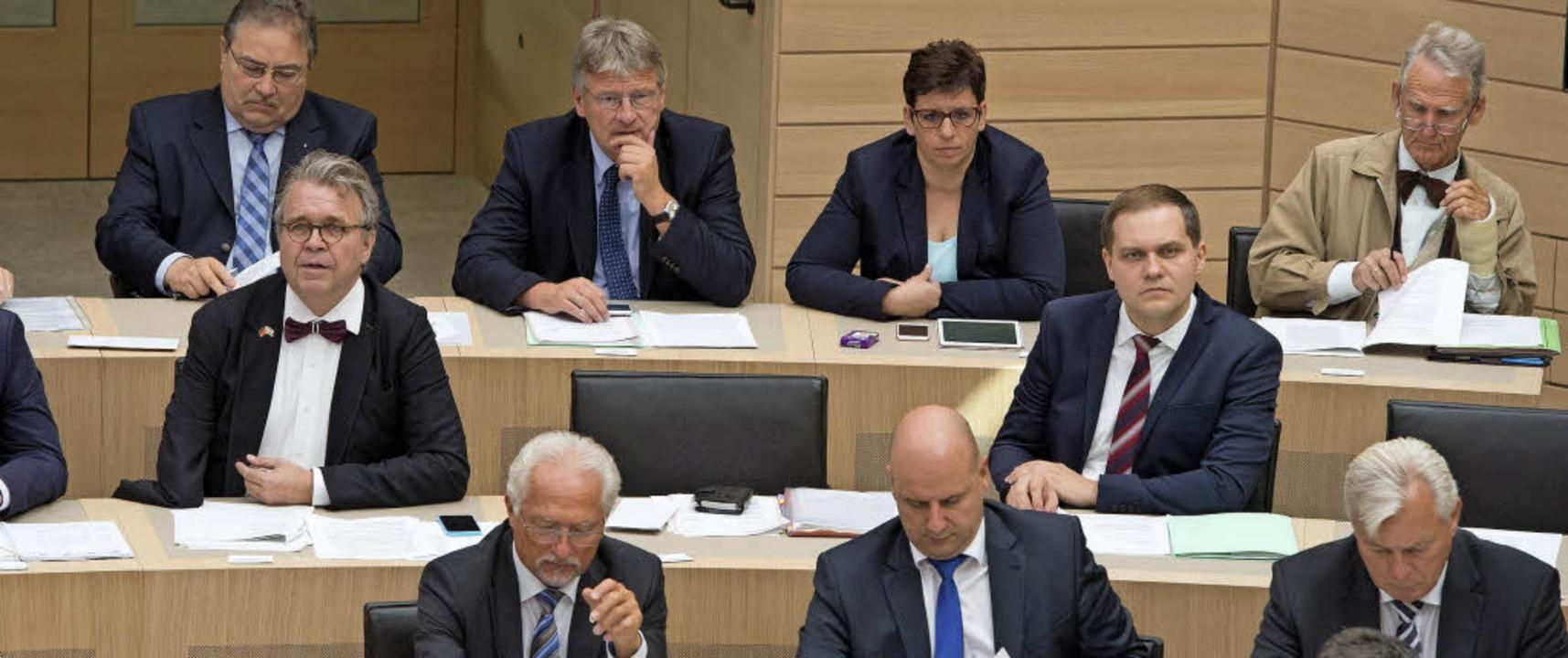 Bei der AfD sitzen Sie in der letzten Reihe:   Meuthen (hinten Mitte)   | Foto: dpa