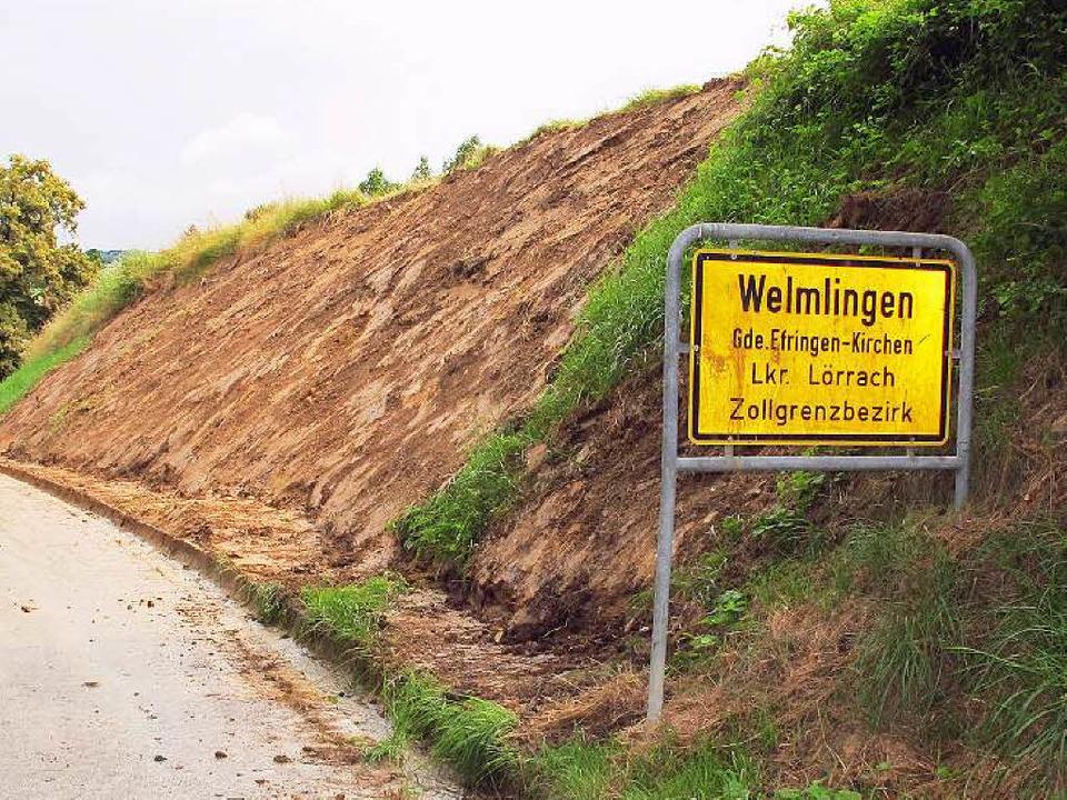 Ein großer Maisacker oberhalb von Welm...mabgänge des Unwetters Ende Juni sein.  | Foto: Jutta Schütz