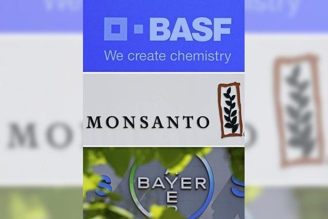 Monsanto flirtet jetzt auch mit BASF