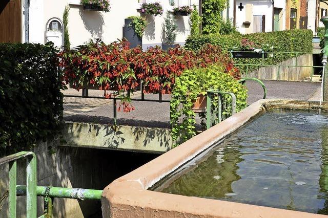 Gemeinde Sasbach muss 43 Brücken instand halten