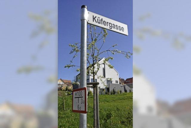 Neubaugebiet in Ötlingen lässt auf sich warten - Erschließung frühestens 2017
