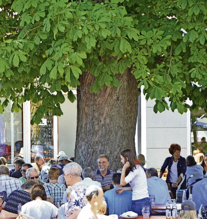 Die Kastanie diente auch beim Johannim...ttenspender, wo dieses Foto entstand.   | Foto: Ralf H. Dorweiler
