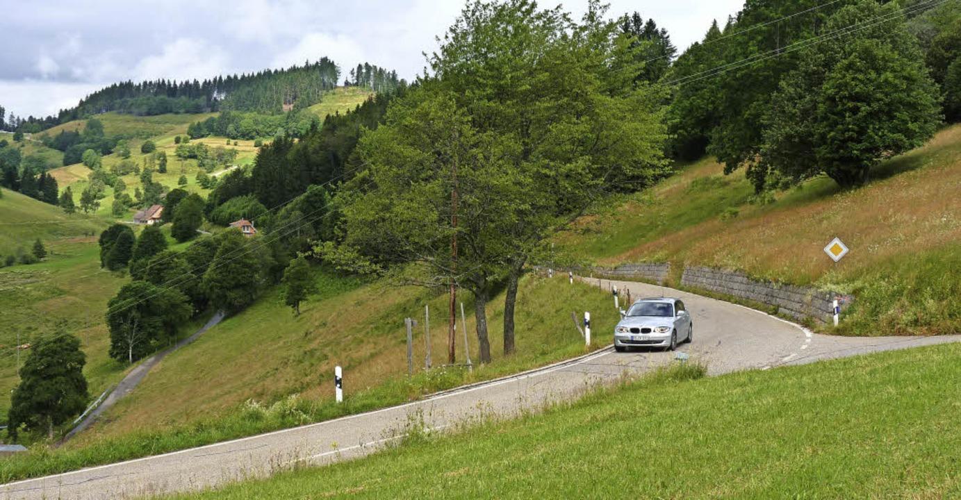 Die Straße von der Rheinebene über den...stigungen am Hang rechts kontrolliert.  | Foto: Sattelberger
