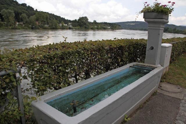 Die Liebe zum Rhein wecken